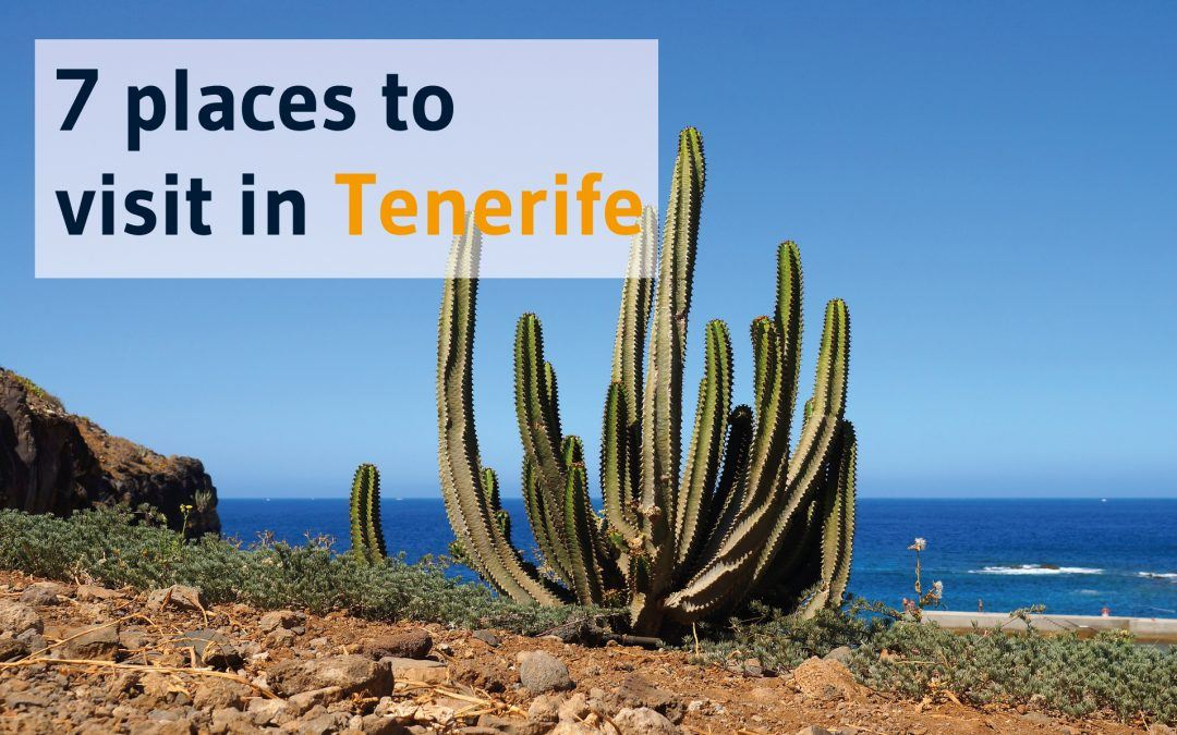 7 Reasons to put Tenerife on your bucket list.