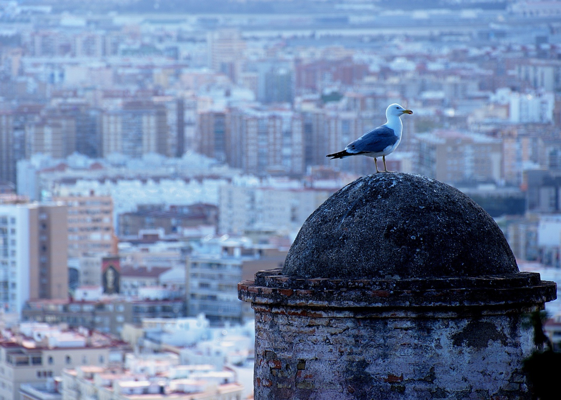 Do you still not know the Costa del Sol? - Vistas Málaga