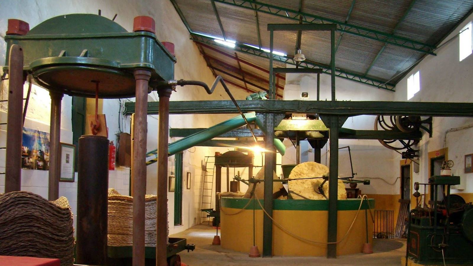 Virgin Olive Oil Production