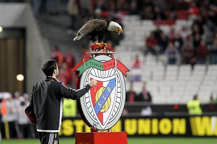 Aguila Benfica