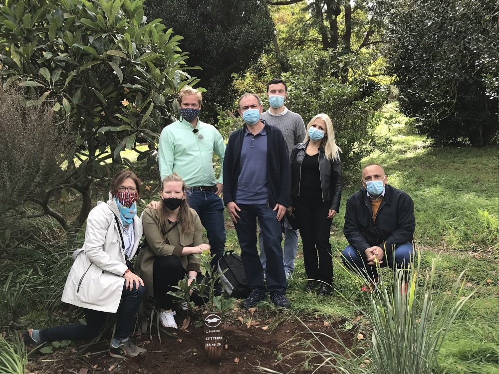 Planting a tree in Madeira