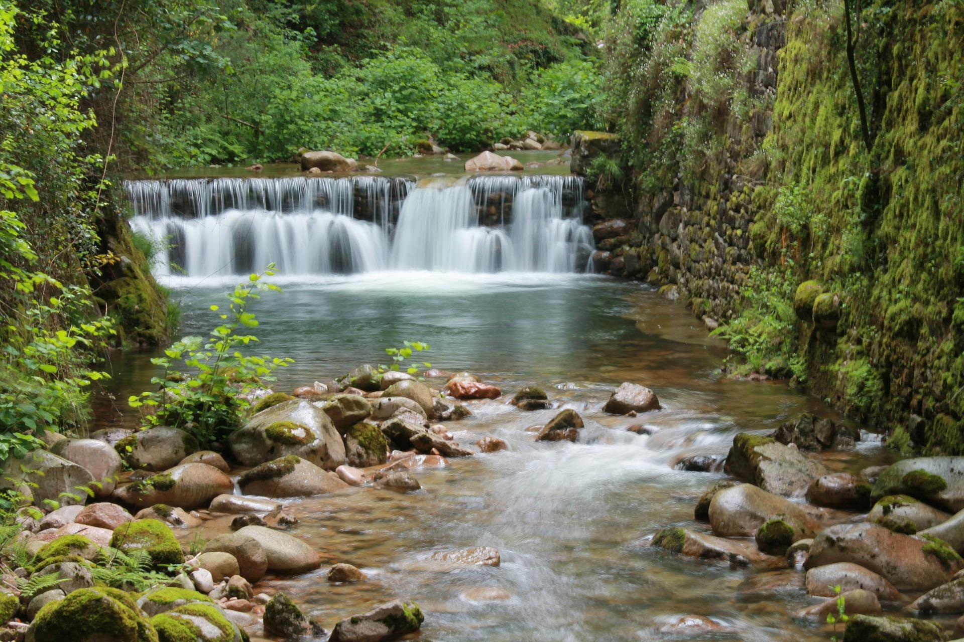 Braga Portugal nature
